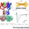 PHY542/NAN542/PHY498 — Topics in BiophysicsI